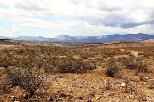 The Southern Sierra Nevada seen from the El Paso Mountain foothills
