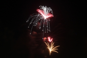 2015 Los Al Fireworks - 015