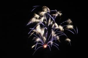 2015 Los Al Fireworks - 020