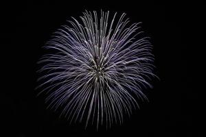 2015 Los Al Fireworks - 021