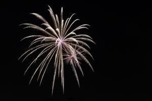 2015 Los Al Fireworks - 023