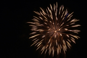 2015 Los Al Fireworks - 024
