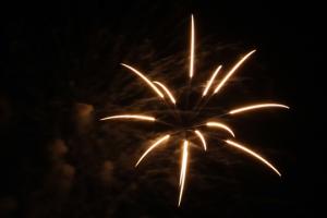 2015 Los Al Fireworks - 025