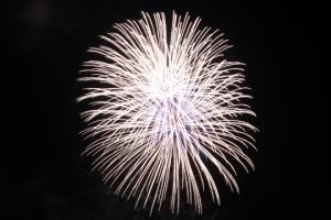 2015 Los Al Fireworks - 026