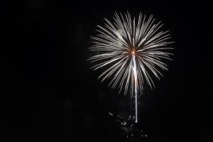 2015 Los Al Fireworks - 029