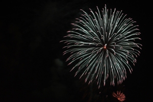 2015 Los Al Fireworks - 036