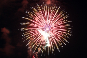 2015 Los Al Fireworks - 037