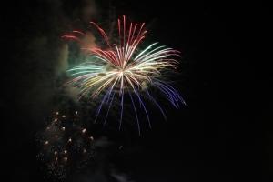 2015 Los Al Fireworks - 045