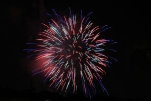2015 Los Al Fireworks - 051