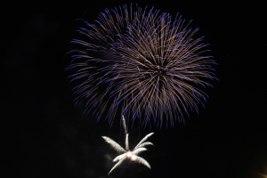 2015 Los Al Fireworks - 052