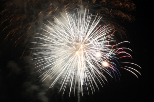 2015 Los Al Fireworks - 056